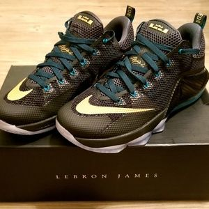 Mens Nike Lebron James XII SVSM Basketball Shoes